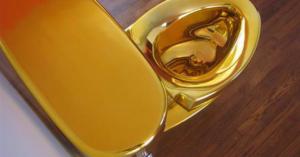 """Golden toilet for blog """"What Kind of Toilet Should I Buy?"""""""