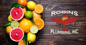 "Photo of citrus on a table with Robins Plumbing logo for blog ""Put Your Plumbing on a Citrus Diet"""
