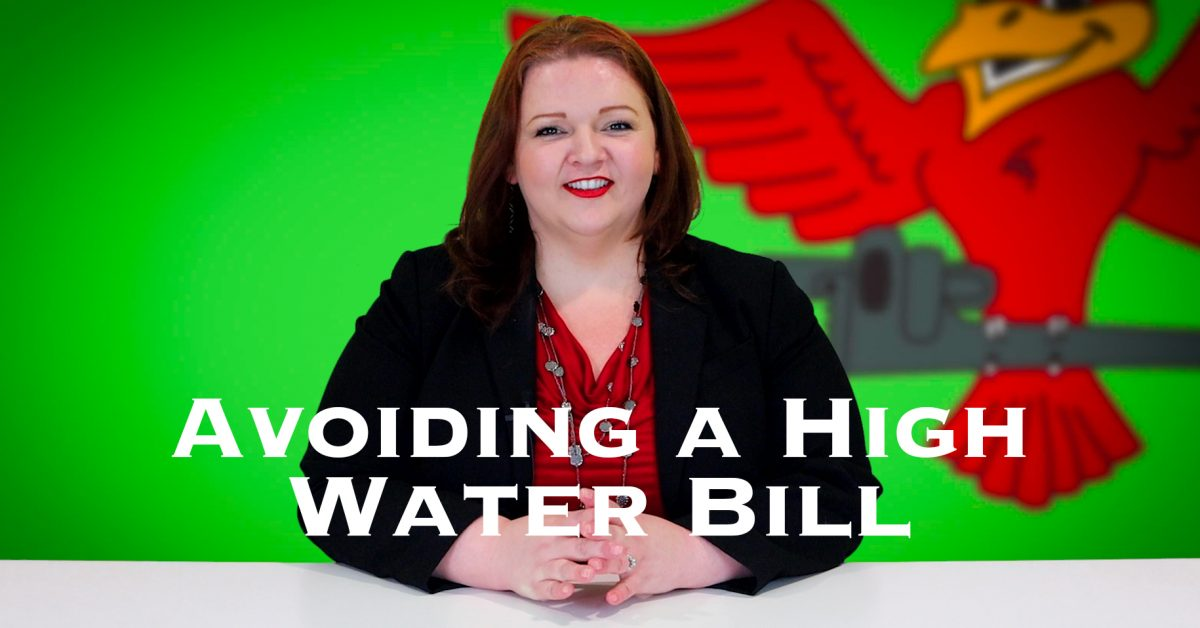 """Cover photo for blog and video """"Avoiding a High Water Bill"""""""