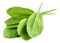 clean-spinach