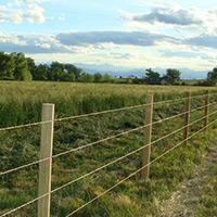 fence8
