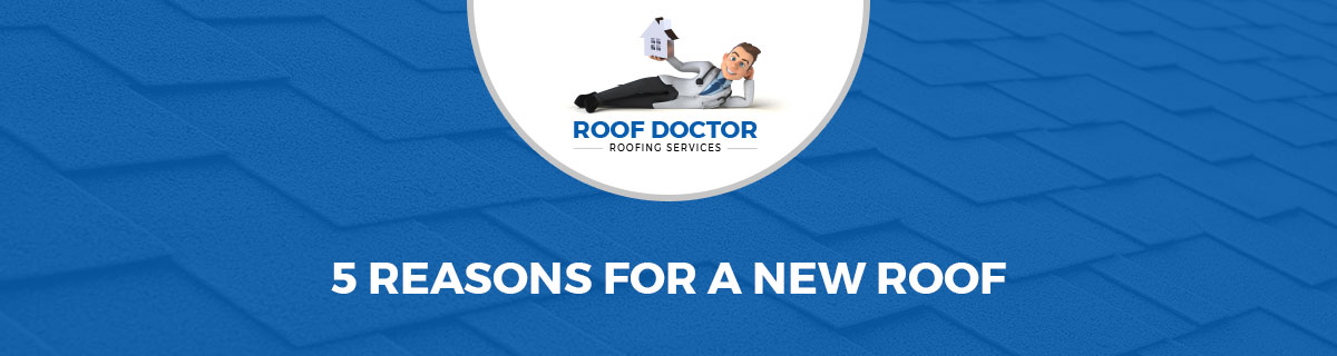 5 Reasons For A New Roof Infographic 1
