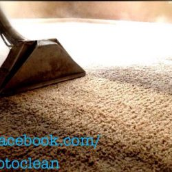 close-up of carpet cleaning