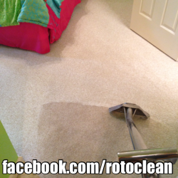 superior carpet cleaning on white carpet