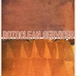 Carpet cleaning and stain removal can renew old carpet