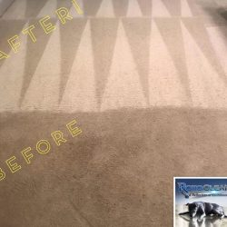 Steam cleaning carpet services