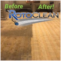 side-by-side steam carpet cleaning comparison