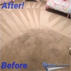 Carpet whitening treatment side-by-side comparison