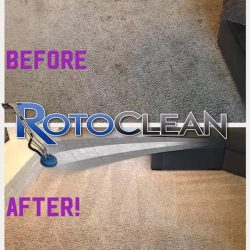 Industry expert steam carpet cleaning