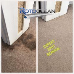 Steam carpet cleaning pulls huge dark stains up from neutral colored carpet