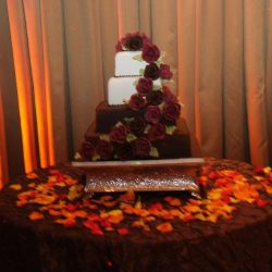 A decorated vanilla and chocolate cake with roses at an event at Royal Palace Ballrooms