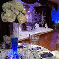 Winter time themed event at Royal Palace Ballrooms