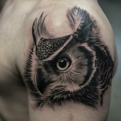 Black and grey realism tattoo of horned owl. Walk in tattoo shop fayetteville NC