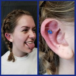 Outer conch 16 Gauge piercing with a 4 cluster opal top in blue.
