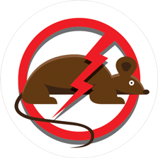 Rodent Control - Rat and Mouse Control in Eastern