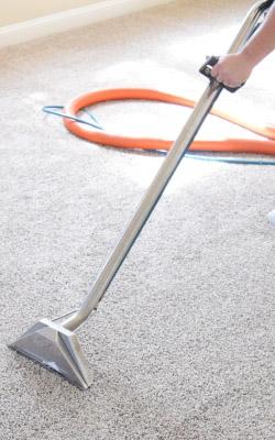 we steam clean carpets