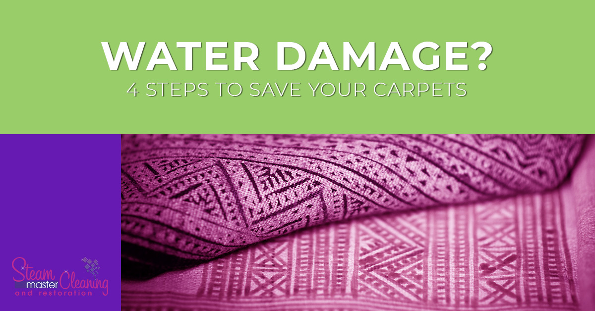 4 Steps To Save Your Carpets