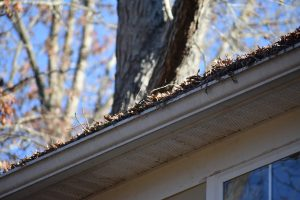 Clogged gutter can cause roof leaks