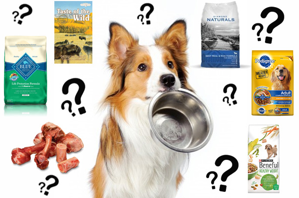 dog food choices
