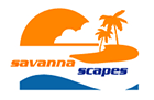 Savanna Scapes
