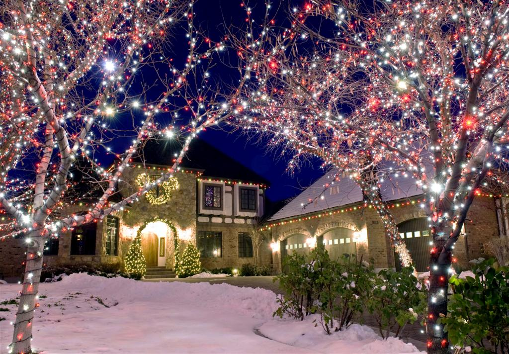 Image of Christmas lights on a house and trees