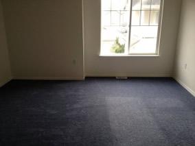 harney carpet