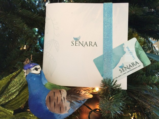 Senara Gift Card Under the Tree