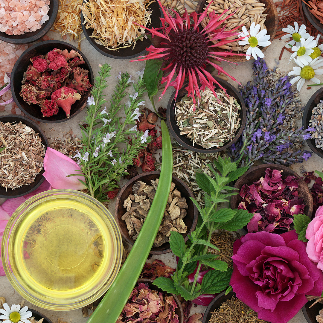 A collage of different flowers and herbs spread out on a table on the ground or in little wooden bowls.