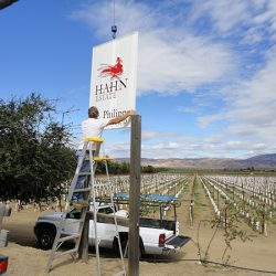 Installation of custom business sign for vineyard