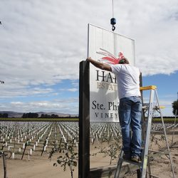 Installing the custom vineyard sign for Ste Phillipe Vineyard