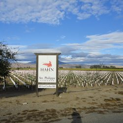 The custom sign for Hahn Estates Ste Phillipe Vineyard