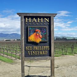 Our custom sign for Hahn Estates' Ste Philippe Vinyard