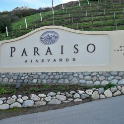 Close up of the custom business sign for Paraiso Vineyards in Soledad