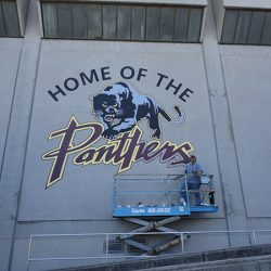 A custom wall mural for the Panthers' stadium