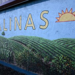 Custom mural sign for Salinas Wine Country