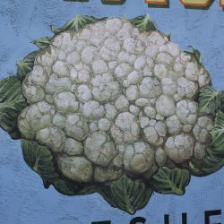 Unique mural featuring white cauliflower