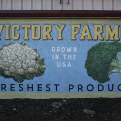 Victory Farms custom painted mural with fresh vegetables