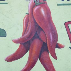Unique mural of hanging red peppers