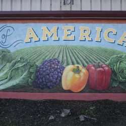 Custom mural signage of produce