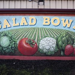 Custom mural signage for Salad Bowl