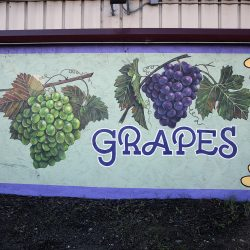 Custom mural signage for grapes
