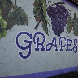 Custom painted mural of purple and green grapes