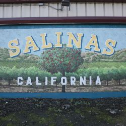 Custom painted mural for Salinas, California