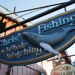 Custom wood sign for Chris's Fishing & Whale Watching