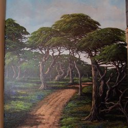 Travel the world with our custom wall murals