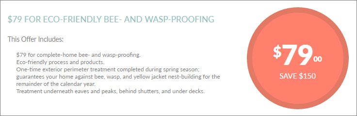 Bee-Wasp-Proofing-Coupon-01