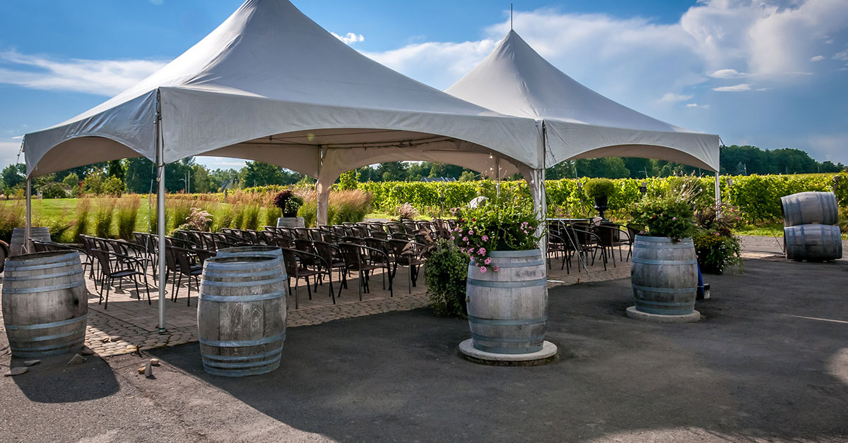 Two tent rentals for 60 people - Skyline Event Rentals