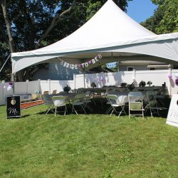 Tent rental at a bridal shower - Skyline Event Rentals