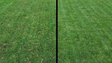 aeration-none-comparison