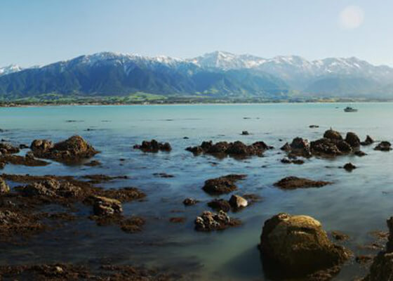 ultimate tour of nz
